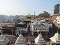 Pashupatinath Temple IMG 1496 45.jpg