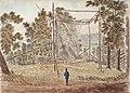 Passenger Pigeon Net Cockburn 1829.jpg