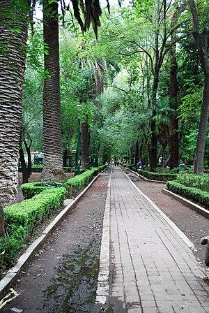 Centro Urbano Benito Juárez - Path in a green area within the complex's borders