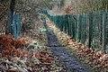 Pathway (2) - geograph.org.uk - 666336.jpg