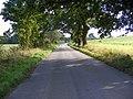 Peasenhall Road - geograph.org.uk - 979375.jpg