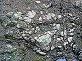 Pedogenic breccia (Conemaugh Group, Upper Pennsylvanian; creek cut on the western side of Caldwell, Ohio, USA) 21.jpg