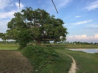 Kataiya, Nepal Village development committee in Nepal
