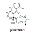 Penicitrinol J.png