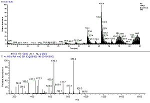 Tandem mass spectrometry - Chromatography trace (top) and tandem mass spectrum (bottom) of a peptide.