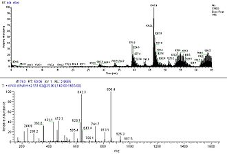 Protein mass spectrometry - Chromatography trace and MS/MS spectra of a peptide.