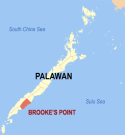 Map of Palawan with Brooke's Point highlighted