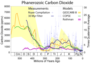 Carbon dioxide variations during the last 500 million years