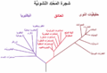 PhylogeneticTree, Woese 1990-ar.PNG