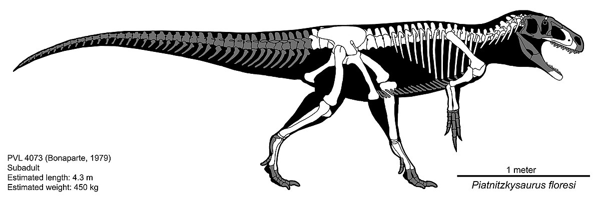 Piatnitzkysaurus - Simple English Wikipedia, the free ...