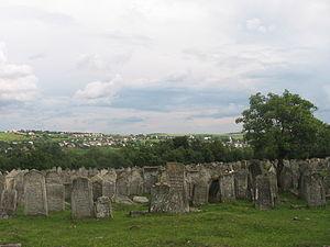 Pidhaitsi - Pidhaitsi Jewish cemetery - panorama (summer 2004)