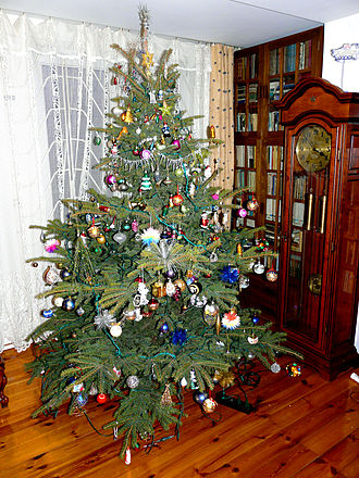 Christmas in Poland - Christmas tree in a Polish home. According to tradition, they are decorated and lit on Christmas Eve – Wigilia