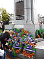 Placing poppies on the cenotaph.jpg