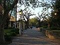 Plaza de San Isidro al atardecer - panoramio.jpg