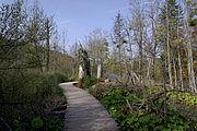 Plitvice Lakes National Park BW 2014-10-13 14-01-15.jpg