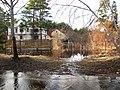 Pludi druvciema 2011 - panoramio (66).jpg