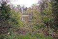 Pond, Lakeside, Enfield - geograph.org.uk - 770156.jpg
