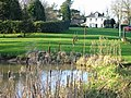 Pond and village green - geograph.org.uk - 634018.jpg