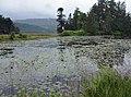Pond at Hilton Lodge, Glen Affric.JPG