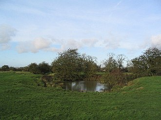 Burton Lazars - Pond at site of St Lazarus Hospital
