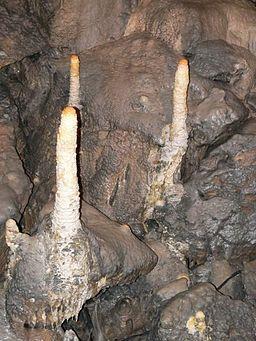 Poole's cavern stalagmites