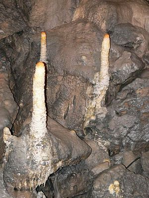 Poole's Cavern - Poached egg stalagmites
