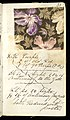 Printer's Sample Book, No. 19 Wood Colors Nov. 1882, 1882 (CH 18575281-31).jpg