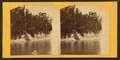 Profile Point, Pictured Rocks, Michigan, from Robert N. Dennis collection of stereoscopic views.png