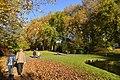 Promenade près des étangs de dirkbeek (22304604213).jpg