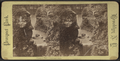 Prospect Park, Ambergill Falls, from Robert N. Dennis collection of stereoscopic views 2.png