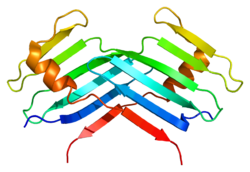 Protein PLK4 PDB 1mby.png