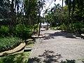 Putrajaya's Botanical Garden 02.jpg