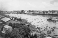 Queensland State Archives 218 Brisbane River with water hyacinth washed down in flood waters from the Bremer River 17 March 1937.png