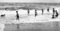 Queensland State Archives 227 Surf swimming at Noosa Heads c 1931.png