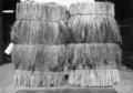 Queensland State Archives 4358 Two well packed bales of broom millet State Produce Agency Brisbane May 1927.png