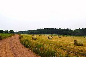 Rambyno regioninis parkas.JPG