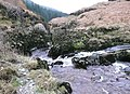 Rapids on the Tywi River, north of Llyn Brianne - geograph.org.uk - 1041132.jpg