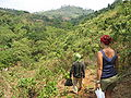 Ratanakiri trail.jpg