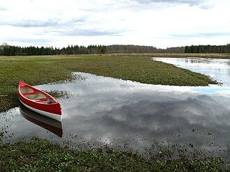Soomaa National Park - The Raudna river