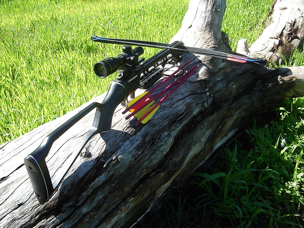 Recurve crossbow with bolts