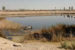 Reducing habitat 130925-F-XI929-242.jpg
