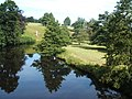 Reflections in the Derwent at Chatsworth - geograph.org.uk - 1430825.jpg