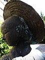 Rheinfelden, Aargau. 1982, Skulpturen Gruppe, Die Rheinfelder Gänse von Peter Lehmann (1921–1995) Bildhauer (2).jpg