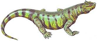 Parareptilia - Image: Rhipaeosaurus DB12 flipped