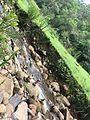 Rio e pedras.jpg