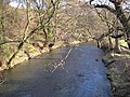 River Browney near Baxter Wood - geograph.org.uk - 340508.jpg