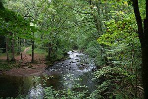 Brendon - Image: River Lynn