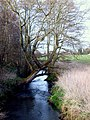 River Penk View - geograph.org.uk - 1215908.jpg