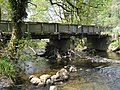 River Severn,Glynhafren farm bridge. - geograph.org.uk - 828602.jpg