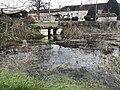 Rivière de Sougère-en-Puisaye en mars 2018 - 2.JPG